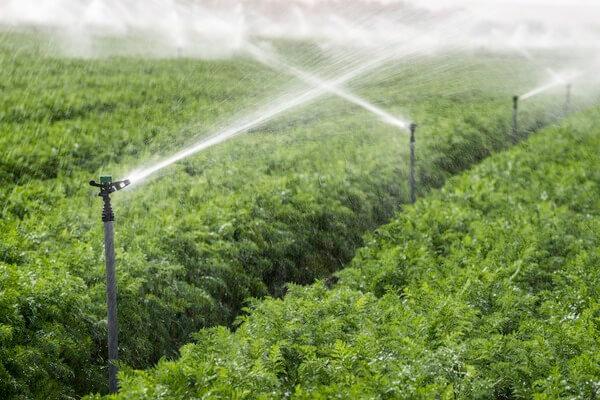 irrigation firm