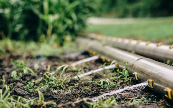 Things That Contribute To A Good Irrigation System